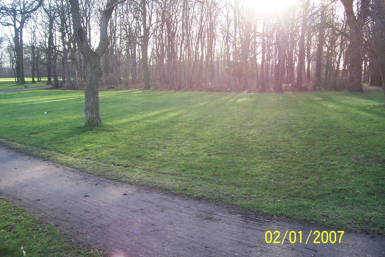 Im Wald (c) familienfreund.de