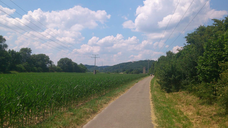 Fahrradweg entlang der Donau (c) familienfreund.de