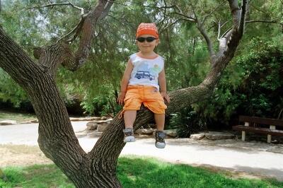 Junge auf dem Baum (c) I. Friedrich / pixelio.de
