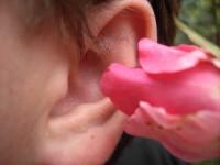 der pausenlose ton im ohr – was tun bei einem tinnitus?