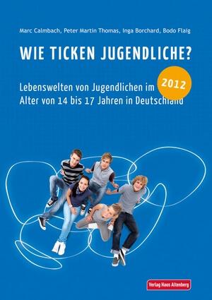Grafik Cover Sinus-Jugendstudie 012 (c) dkjs.de