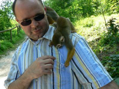Tier | Affe auf Schulter eines Mannes (c) Mario Schieke / pixelio.de