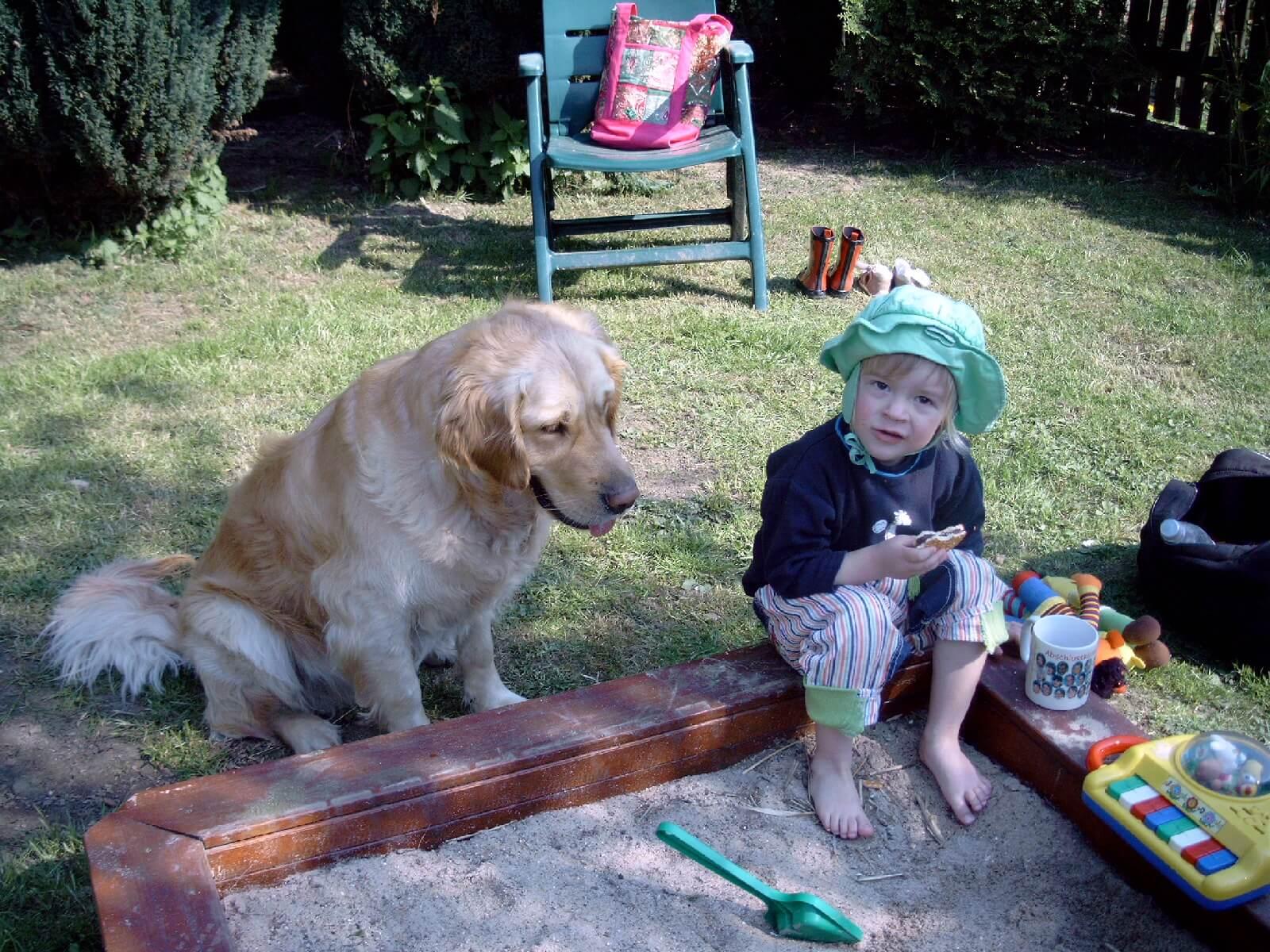 Kind am Sandkasten mit Hund (c) H. Braun / pixelio.de
