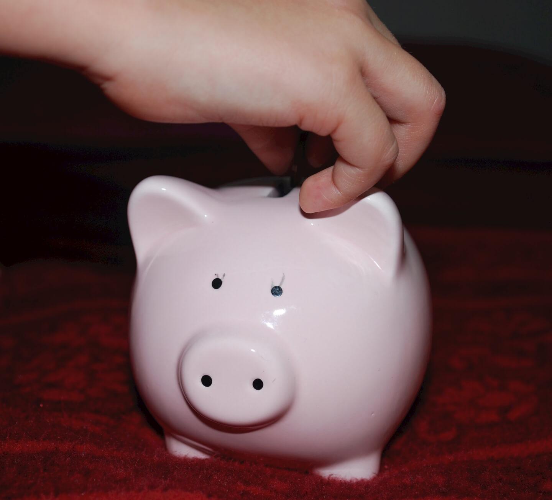 Sparschwein (c) gaertringen pixabay.de.jpg