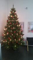 festlich geschmückter Weihnachtsbaum (c) familienfreund.de