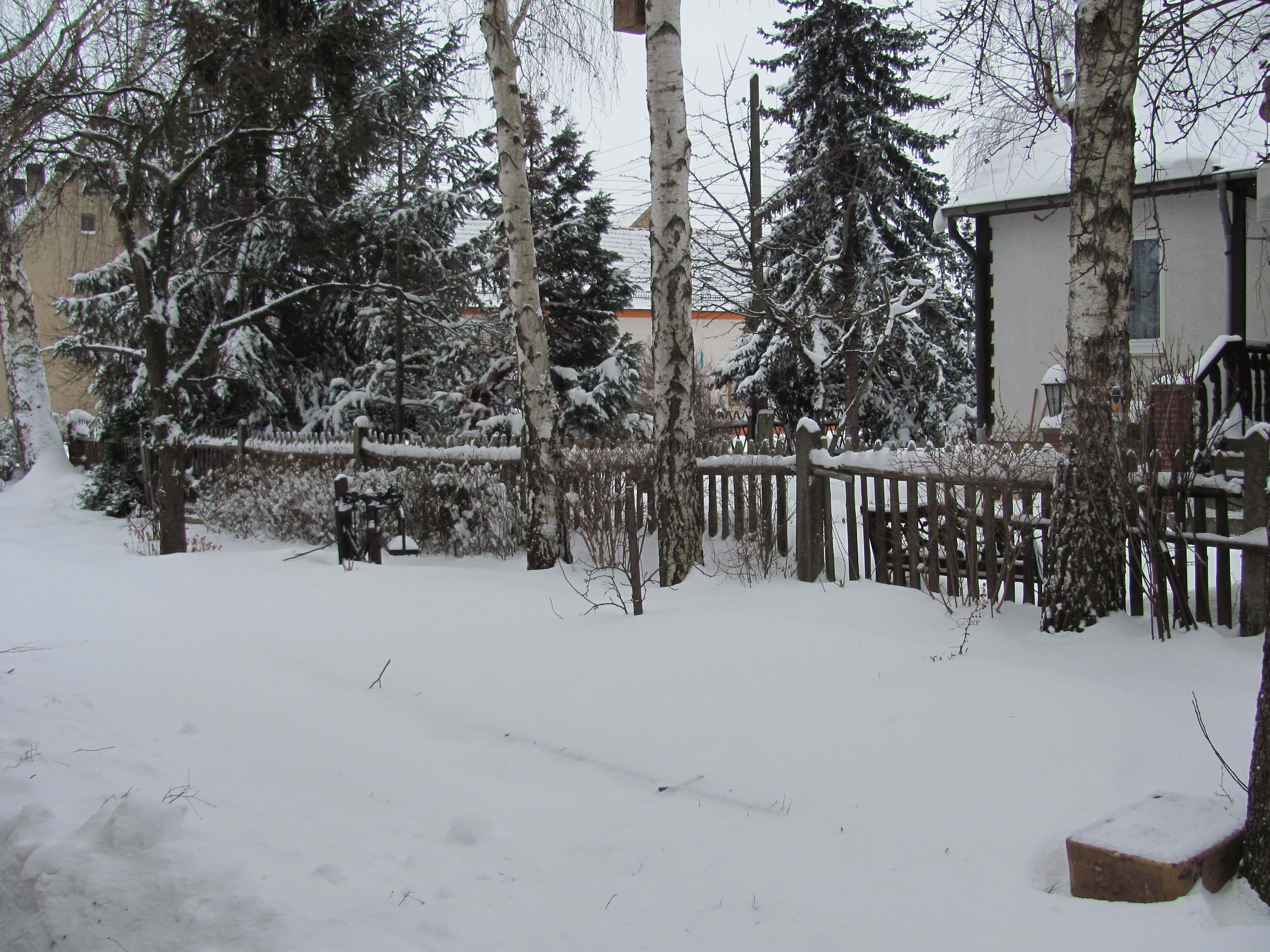 Winter Schnee (c) familienfreund.de
