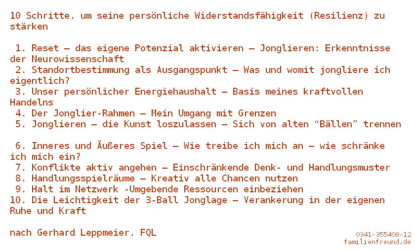 10 Schritte zur Stärkung der persönlichen Widerstandsfähigkeit - Resilienz (c) Gerhard Leppmeier, FQL