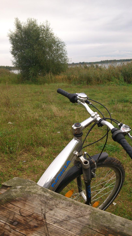 Fahrradlenker (c) familienfreund.de