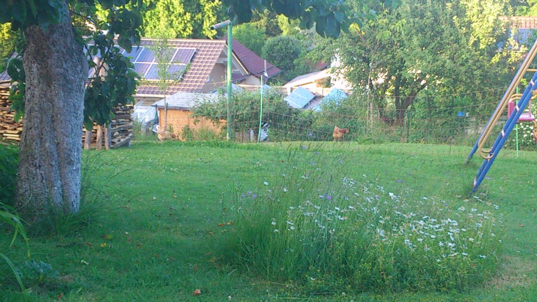 Garten (c) familienfreund.de